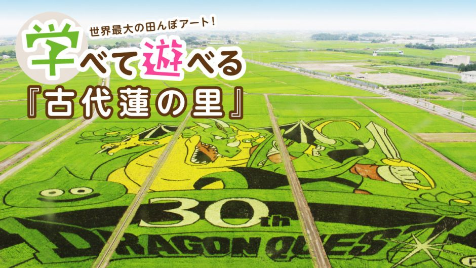 埼玉利根地域・田んぼアートのアイキャッチ画像