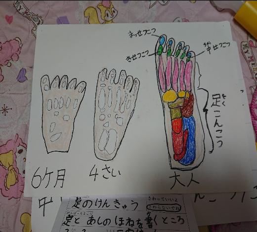 【無料・オンライン】8/7(金)15:00〜\夏休みの自由研究にも/親子で『足』を研究しよう